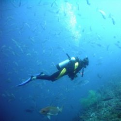 SOS Sul   Serviços - Mergulho